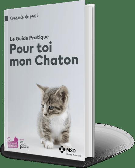 Cover_Family_Member_Cat_FR